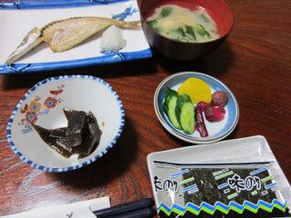 sakaguchi7.jpg